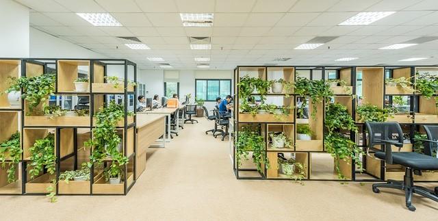 Dịch vụ cho thuê cây cảnh Đà Nẵng