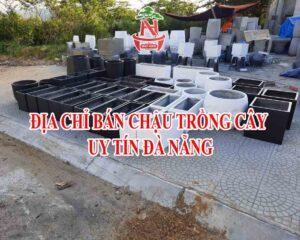 Địa chỉ xưởng bán chậu trồng cây uy tín Đà Nẵng